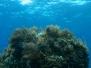 Paesaggi e scorci di Mare